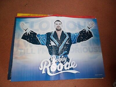 WRESTLING:WWE BOBBY ROODE/NIKKI BELLA DOUBLE SIDED A3 SIZE POSTER wwf
