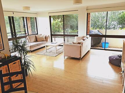 Sunny Bright Spacious Place by Shelly Beach Manly