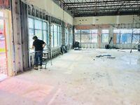 5 lion demolition service Oakville