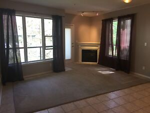 Stunning 2 Bedroom Condo in Oliver - Fireplace - 10 Ft Ceilings!