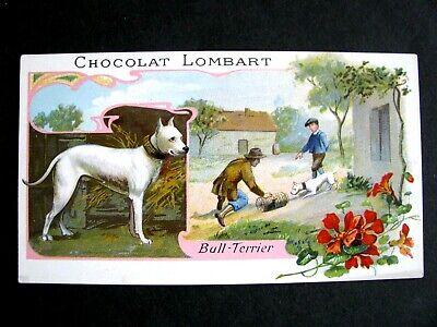 Chromos chocolat lombart 1720-1760 au fidèle berger