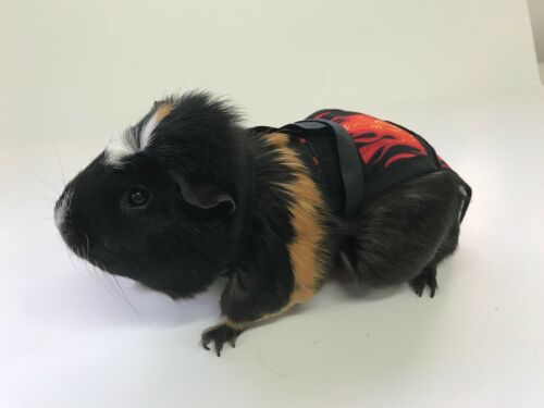 PIGGY PANTS ll GUINEA PIG DIAPERS- Flames **FREE SHIPPING**