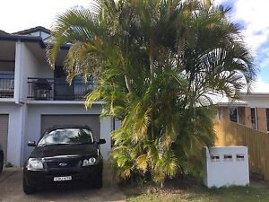 Ground floor for rent in Lennox Byron Bay Byron Area Preview