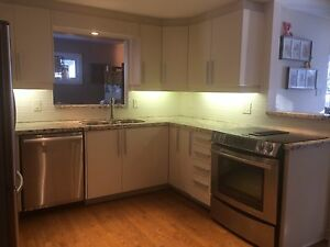 Countertop Dishwasher For Sale Ottawa : ... countertop ottawa 12 hours ago kitchen for sale for a steal of a deal