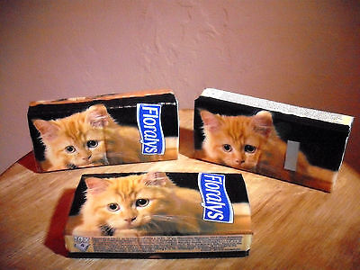 3 Packs GINGER KITTEN Super Soft White 4 -ply 10 Pocket Tissues FLORALYS Handbag