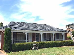Roof painting and cleaning ( free quote , good price ) Picnic Point Bankstown Area Preview
