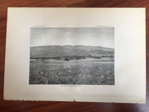 1883 Hawaii Lithograph Book Plate of Mauna Kea from the South