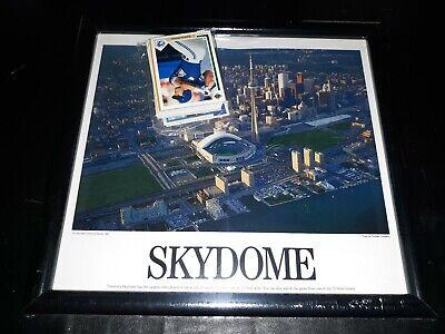 Toronto Blue Jays Framed Skydome Baseball Stadium Photo PictureMLB Toronto Blue Jay Stadium