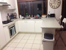 REGULAR CLEANING IN CAPALABA! Capalaba Brisbane South East Preview