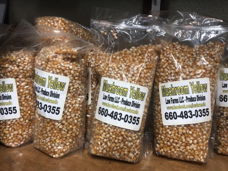 Mushroom Popcorn Kernels - Free Shipping - 4 Bags - Gourmet Popcorn
