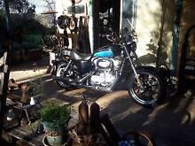 Harley Davidson 883 super low, great machine with extras. Dorrigo Bellingen Area Preview