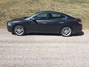 REDUCED BEAUTIFUL MINT CONDITION 2010 NISSAN MAXIMA SV