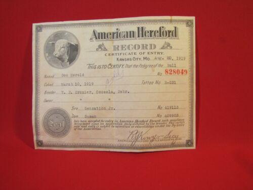 Vtg 1919 American Hereford Pedigree Certificate Record Osceola Neb - Kansas City