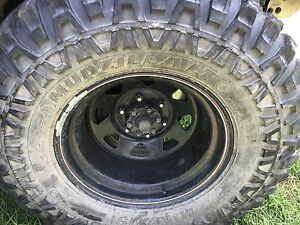 Swap my 35s for a set of 33s Campbelltown Campbelltown Area Preview