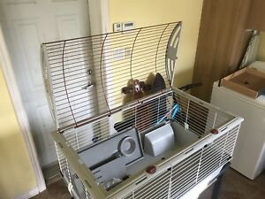 LARGE CAGE POUR RONGEURS / LARGE RODENT CAGE