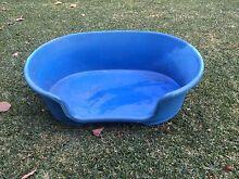 Large plastic dog bed Blue East Victoria Park Victoria Park Area Preview