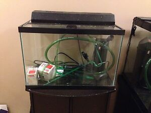 20 Gallon Tank, Stand, Filter, Heater, and all the extras!