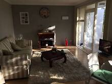 Room for rent Kingsford/Randwick Kingsford Eastern Suburbs Preview