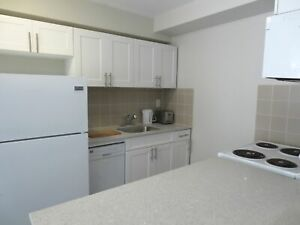 ALL INCLUSIVE 1 Bedroom Newly Renovated,  Downtown!