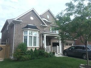 Spacious detached house in Milton for rental