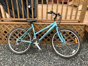 Large Women's Bike