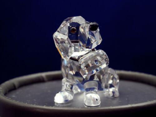 Swarovski Crystal St Bernard 7619 NR 000 006 w/ Box & COA