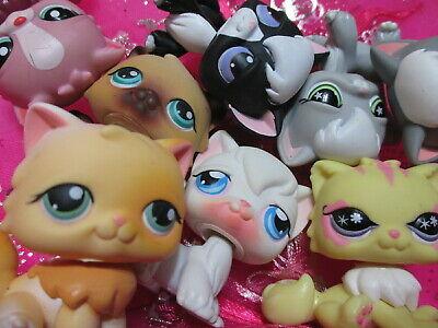 Littlest Pet Shop Set Lot 2 Random Angora Persian Cat Set Authentic Lps