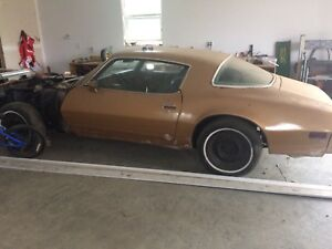 1977 firebird for sale