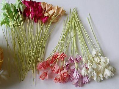 50 of Gypso Flower Mulberry paper Scrapbooking Card Crafts Wedding DIY 0.90cm. (Paper Flower Crafts)