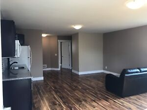 Brand new 3 bed 1 bath suit (UTILITIES INCLUDED)