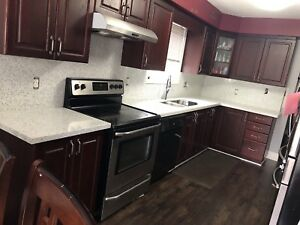 Granite and Quartz countertops and more !