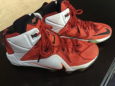 3007369538a4d Mens Lebron James Heart of the Lion Basketball shoe size 10