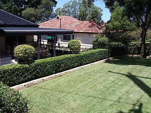 Lawn mowing, Hedge trimming, Gutter Cleaning and Gardening Abbotsford Canada Bay Area Preview