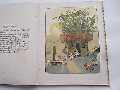 Original Kinderbuch Die Wiesenzwerge Märchen von Ernst Streidolf 1902