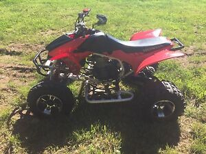 TRX450R with papers