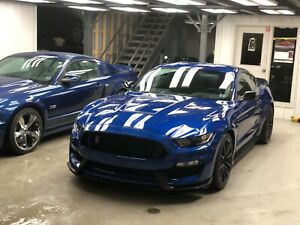 2017 Shelby