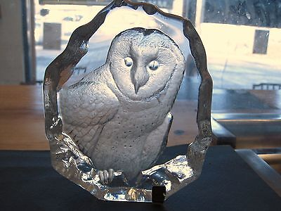 cool glass frames  owl rare cool