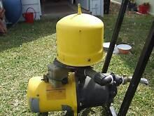 DAVEY WATER PRESSURE PUMP & MOTOR. West Tamworth Tamworth City Preview