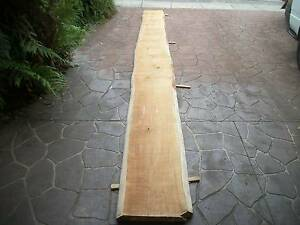 BUNYA PINE TIMBER SLAB - 5.3 mtrs x 45cm & 2.2 mtrs x 1 mtr Panania Bankstown Area Preview