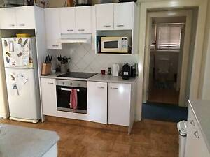 Amazing Huge and Cheap room in St Lucia St Lucia Brisbane South West Preview