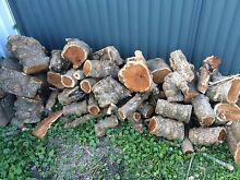 Free Firewood Killarney Vale Wyong Area Preview