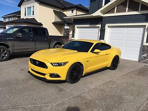 American Muscle - 2015 Mustang GT SUPERCHARGED