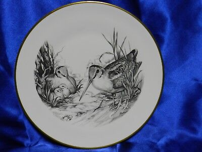(Vintage Boehm Game Bird Series Woodcock Collector Gold Trim Plate VGC VT2233)