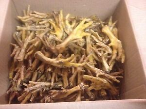 2kg box Chicken Feet Natural Treat for Dogs CHEAPER THAN WHOLESALE(100-200)