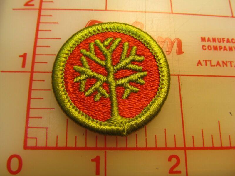 GENEALOGY merit badge plastic backed patch (oP)