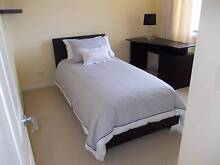 1 x Single room on 2nd storey of modern home. Molendinar Gold Coast City Preview