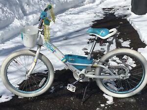 Vélo trek 21 pouces pour filles