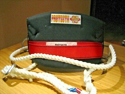 Work Positioning Belt Protecta