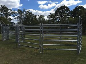 Cattle Yard with Crush Morayfield Caboolture Area Preview