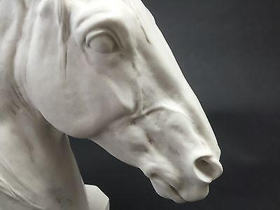 Thoroughbred Horse Head, Carrara Marble Sculpture Horse Lovers Gift, Ornament.